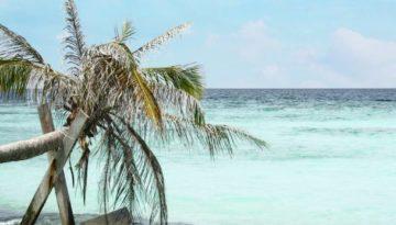Malediwy na własną rękę78