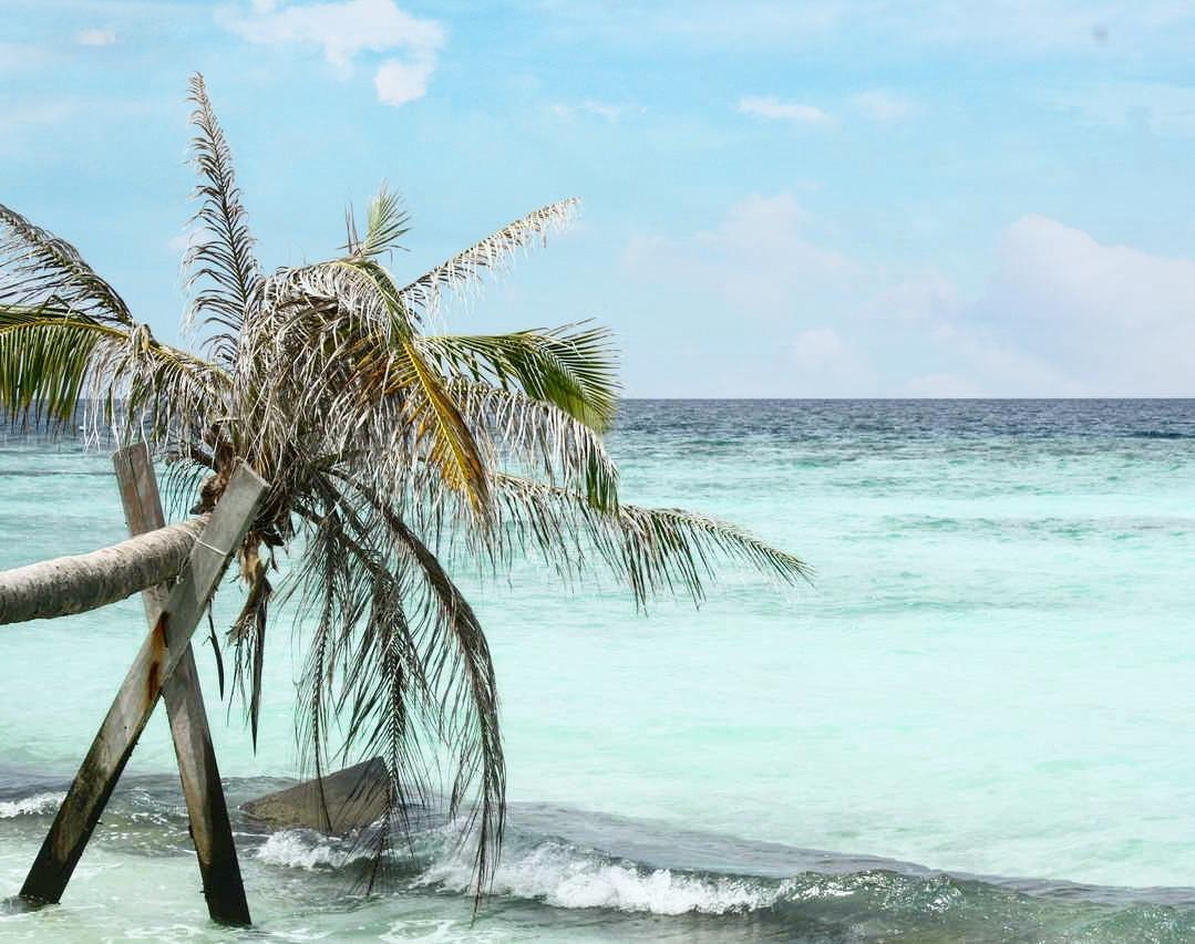 Malediwy na własną rękę