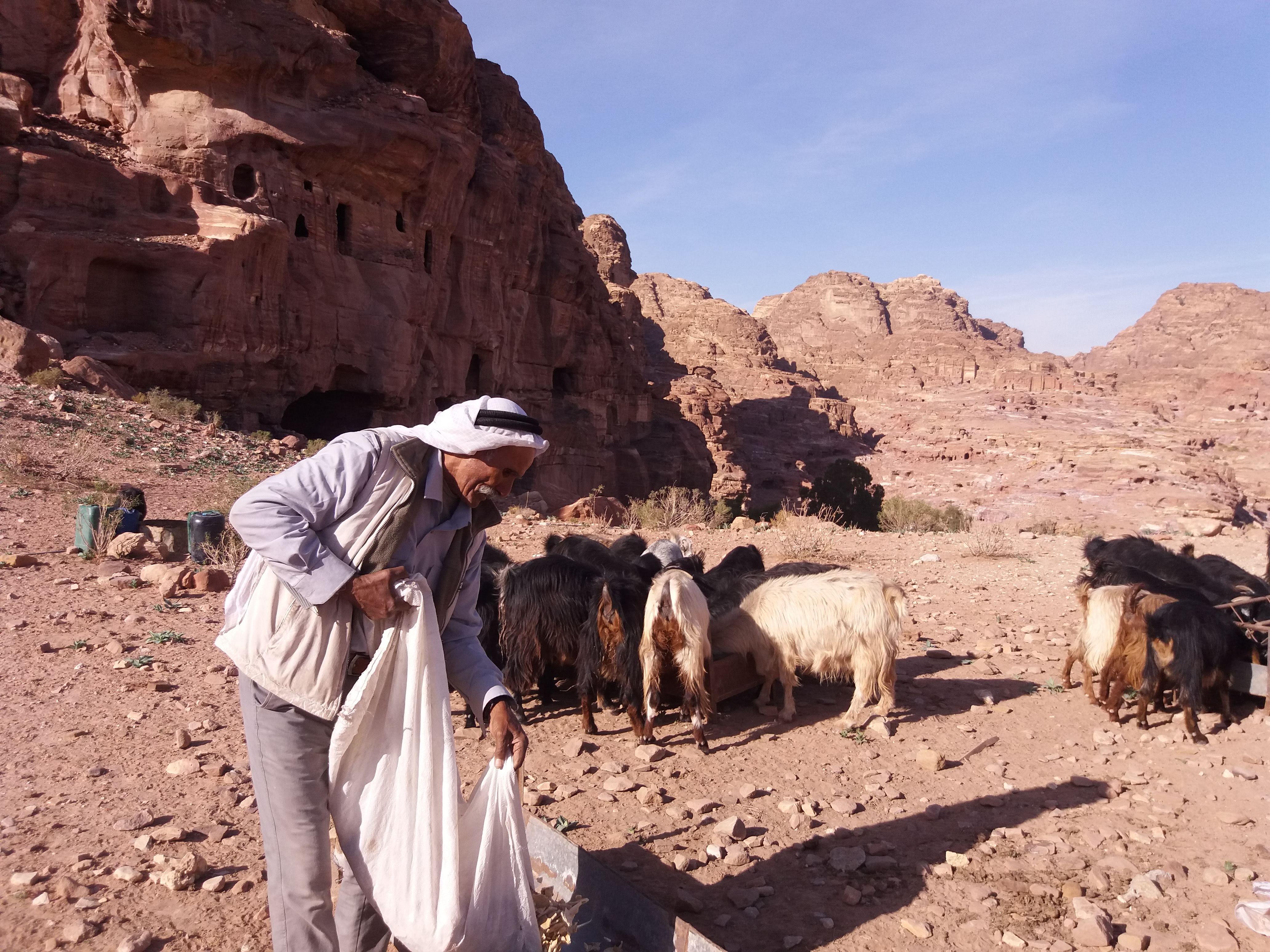jak dostac się do Jordanii