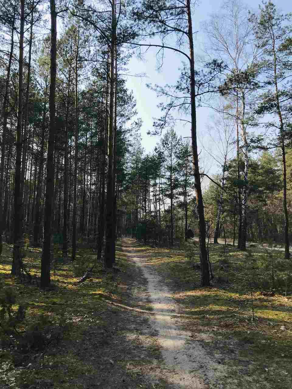 rezerwat przyrody pod Warszawą